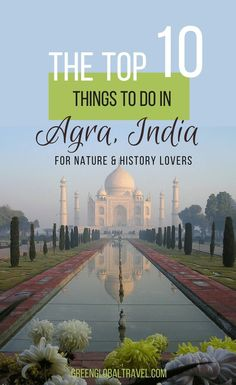 The Top 10 Things To Do In Agra, India For Nature & History Lovers, including visiting Agra Bear Rescue Facility, Agra Red Fort, Mehtab Bagh Garden & more! Cool Places To Visit, Places To Travel, Travel Destinations, Travel Tips, Travel Ideas, Travel Checklist, Travelling Tips, Travel Hacks, Travel Advice