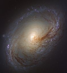 NGC 3368 galaxy. Photo by Hubble.