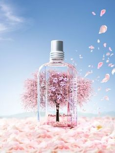 271 bästa bilderna på Beauty product | Parfym, Parfymflaskor