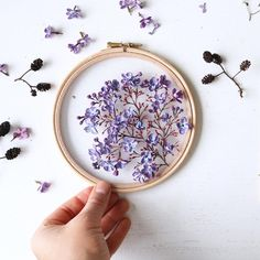 Lilac season! These are dry and still smell so beautiful. #lilac #dryflowers #embroidery #moderncraft #madetocreate #makersmovement #canon #flowermagic #flatlay #handsinframe #fromabove #onmytable #wipsandblooms #aquietstyle_forage #ig_daily #ig_nature #fromthegarden #tablesituation #underthefloralspell #botanical #botanicalforagersunitedsocietyinc #tv_stilllife