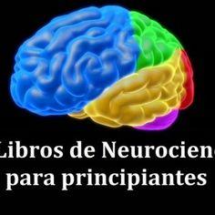 12 libros de Neurociencias para principiantes (muy recomendables)