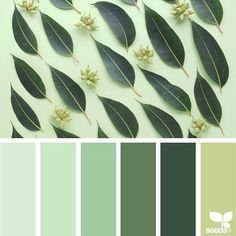 Design Seeds + Color Atlas by Archroma® Colour Pallette, Color Palate, Color Combos, Color Schemes, Design Seeds, Designers Gráficos, Make Color, Color Pick, Color Blending