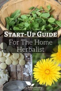 Start-Up Guide For The Home Herbalist- Scratch Mommy