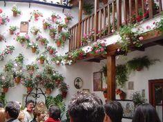 Cruces de Mayo y Patios de Córdoba