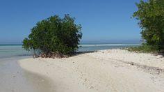VoyageForum.com> Forum> Thèmes> Hôtels et forfaits tout-inclus> Cuba> Cuba: cherche hôtel près d'une ville