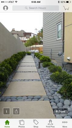 I love the stone and the pathway in between the green plants