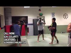 Sampa Brazilian Jiu Jitsu Mixed Martial Arts and Fitness