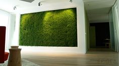 moss vertical garden - Google Search