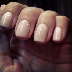 08 Nude Elagance #alessandro #alessandrointernational #alessandronails