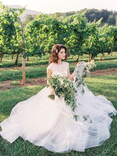 Vineyard Wedding Inspiration by Wedding Nature Photography