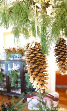 Decorating our Victorian home for Christmas… I used lots of evergreens and HUGE pinecones for simple and lush holiday decor.