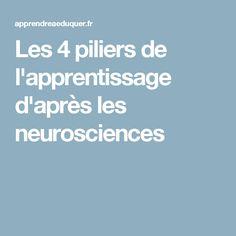 Les 4 piliers de l'apprentissage d'après les neurosciences