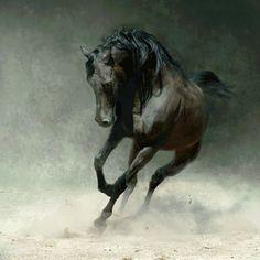 """Gyönyörűségeim,Horses gif általam,Gradus,Pici kép, annál szebb!,Anya és csikója,Összhang,Beautyful Head,Ló fejek,Barna, szürke, fekete,Egy ló lelke, - menesgazda Blogja - A Lótartás,Az andalúz,Az Anglo-Arab ló,Az angol telivér,Az arab telivér,Blogra képek,ch an rajzai,Fríz,Ló é lovas """"dolgok"""",Lovas képek vegyesen,mozdulatok,Musztáng,Versek, gondolatok,videók,"""