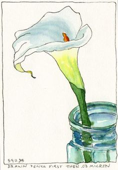nice pen and ink and watercolor: