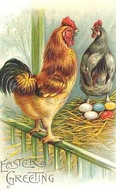 ♥ vintage Easter Chicken greeting card