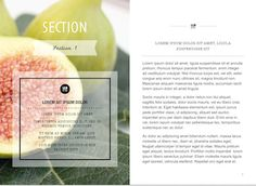 Palette Template For Ibooks Author Available At Http