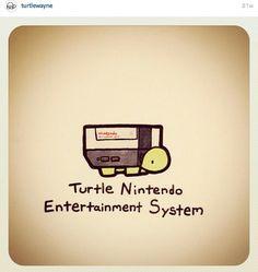 Cute Turtle Drawings, Cute Animal Drawings, Cool Drawings, Tiny Turtle, Turtle Love, Cartoon Turtle, Little Doodles, Kawaii Doodles, Turtle Painting