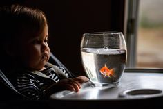 Boy meets fish in this photograph by Sasha Čukure (@europeanmommyof2). To submit your images for consideration on our feed follow @childhoodeveryday and tag your photos #childhoodeveryday. // #portrait #portraits #portraitphotography #naturallight #familyphoto #familydocumentary