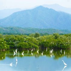 """Looking for an """"off-the-grid"""" vacation? We've got you covered! #Explore #RivieraNayarit"""