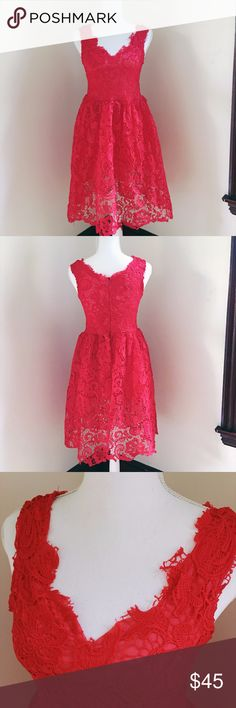 Vintage Inspired Lace V-Neck Skater Dress Gown Brand new, never worn. Beautiful red lace floral skater style frilly dress/gown with tulle underneath for added volume and elegance. Plunging v-neck line with tattered lace in the front, sleeveless, and zips up in the back. Falls a little above the knee depending on your height. Stretchy material for a flexible fit. Perfect for summer or fall paired with tights. Labeled as size small (asian brand) but runs large, fits more like a medium or large…