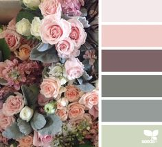Design Seeds celebrate colors found in nature and the aesthetic of purposeful living. Design Seeds, Colour Pallette, Colour Schemes, Color Combos, Decoration Palette, Color Balance, Color Swatches, Color Theory, House Colors