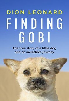 Finding Gobi . Book Review . True Story Dog Rescue
