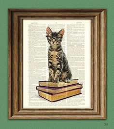 Book Cat in Cats Eye Glasses. Early Reader Kitten illustration beautifully upcycled dictionary page book art print via collageOrama on etsy Cat Lover Gifts, Cat Gifts, Book Gifts, Gatos Cat, Cat Posters, Early Readers, Cat Wall, Cat Eye Glasses, Drawing