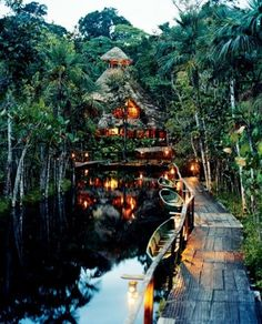 The Amazon Rainforest in Brazil | Found on travelshare.it