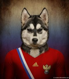 Russia – Siberian Husky The more representative dogs from every country photographed wearing the uniform of their football national team for Life on White. World Cup Teams, Fifa World Cup, Everton, Ufc, Site Photo, Amor Animal, Soccer Uniforms, Soccer Jerseys, Puppies And Kitties