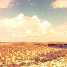 Perdido Key State Park, Florida by Dennis Duszynski, via Flickr. Lucas AB2 lens + Blanko Freedom13 film