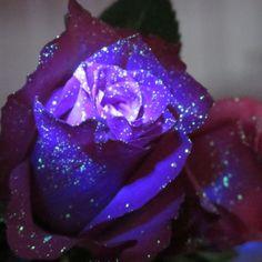 Glow in the dark galaxy flowers ... omg!