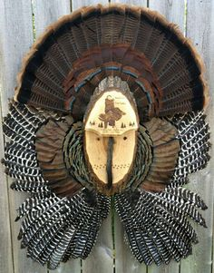 What a terrific way to show off your trophy turkey!