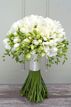 Hochzeit Bridal bouquet consisting of purely white freesias by Philippa Craddock Flowers . Alpi , Bridal bouquet consisting of purely white freesias by Philippa Craddock Flowers . [ Bridal bouquet consisting of purely white freesias by Philippa C. Freesia Bridal Bouquet, Bridal Flowers, Flower Bouquet Wedding, White Flowers, Floral Wedding, Beautiful Flowers, Freesia Flowers, Diy Wedding, Trendy Wedding
