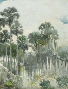 Winslow Homer (1836-1910) Florida Jungle (1886) watercolor and pencil on paper 35.6 x 27.3cm