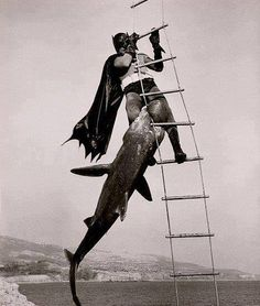 Batman's philosophy on fishing: Go big or go home. You are the bait.