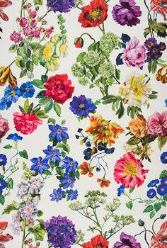 Designers Guild Alexandria Wallpaper in Magenta colourway - swoony swoon swoon