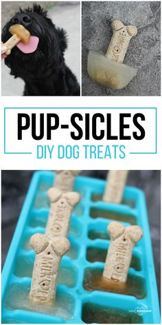 Easy Dog Popsicles Will Keep Your Dog Cool All Summer DIY Dog Popicles. These pup-sicles are the perfect treat for your dog on hot days. These pup-sicles are the perfect treat for your dog on hot days. Puppy Treats, Diy Dog Treats, Homemade Dog Treats, Dog Treat Recipes, Dog Food Recipes, Dog Popsicles, Frozen Dog Treats, Dog Cookies, Dog Care