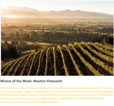 """Newton Vineyard: """"Nature by Design"""" philosophy is present throughout the winemaking process."""