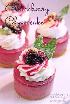 Blackberry Cheesecakes with fresh blackberry puree on a golden Oreo crust! Blackberry compote and whipped cream garnish makes this petite elegant dessert. Mini Desserts, Small Desserts, Party Desserts, Just Desserts, Delicious Desserts, Cheesecake With Whipped Cream, Blackberry Cheesecake, Mini Cheesecake Recipes, Blackberry Recipes