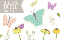 Hiking Trail - Butterfly Clip Art ~~ This flower and butterfly clip art includes some lovelies you might see on a hiking trail. Includes dragonfly clip art, butterflies, black eyed susan flowers, leaves, and foliage. Comes in the colors and styles pictured. Comes with 33 PNG Images and an EPS