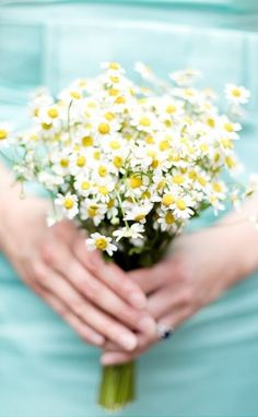 If you're doing daisies for your wedding flowers, have your bridesmaids' bouquets made out of these gorgeous chamomile and posies! Gives a daisy look, but smaller so that your bridal bouquet stands out!