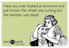 Funny Ecard: Have you ever looked at someone and just known the wheel was turning but the hamster was dead?