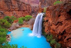 Havasu Falls off of Grand Canyon, Arizona. lived in Arizona for 5 years and went to the Grand Canyon and didn't know this was there. Grand Canyon Arizona, Havasu Falls Arizona, Havasupai Falls, Arizona Usa, Havasupai Arizona, Havasupai Waterfalls, Arizona Travel, Arizona Waterfalls, Vacation