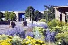 Museum of International Folk Art. Santa Fe.