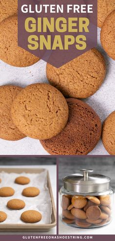 Perfect for the upcoming holidays- these gluten free ginger snaps are the perfect spiced cookies! True to their name, these crunchy cookies are crispy, not chewy, and actually snap when your break them in half! Make these healthy and tasty ginger snaps as a Thanksgiving dessert, or gift them for Christmas. #gingersnaps #glutenfreecookies #crispygingersnaps #christmascookies Gluten Free Deserts, Gluten Free Treats, Gluten Free Baking, Gluten Free Recipes, Keto Recipes, Best Gluten Free Cookie Recipe, Delicious Cookie Recipes, Gluten Free Gingerbread, Ginger Snaps