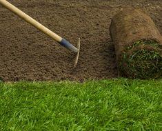Grass Sodding