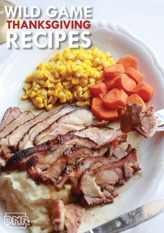 A mouth-watering collection of wild turkey, goose, duck and pheasant recipes to spice up the Thanksgiving table! Wild Turkey Recipes, Leftover Turkey Recipes, Wild Game Recipes, Venison Recipes, Leftovers Recipes, Deer Recipes, Thanksgiving Side Dishes, Thanksgiving Recipes, Holiday Recipes