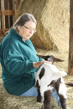 Chris with a baby goat. Baby Goats, Cow, Animals, Animales, Animaux, Cattle, Animal, Animais