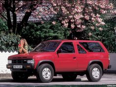 Nissan Terrano, Datsun Car, Polished Man, Nissan Pathfinder, Mini Trucks, Cars And Motorcycles, Cool Cars, Things To Come, Vehicles
