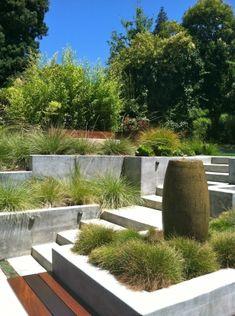 Outer Space Landscape Architecture | San Francisco Bay Area | Portfolio | oakland makeover<